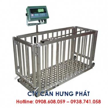 Cân heo điện tử  300kg - Cân gia súc 300kg - Cân điện tử Hưng Phát